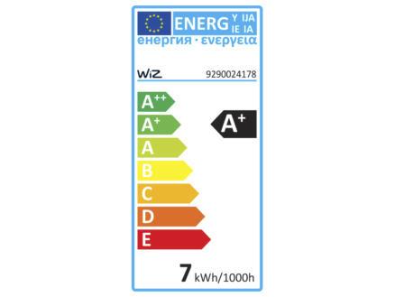 Wiz ampoule LED Edison filament verre ambré E27 8W dimmable