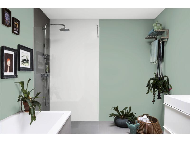 Levis Ambiance muurverf extra mat 2,5l eucalyptus