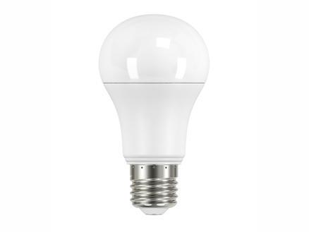 Prolight Ampoule LED E27 11,6W blanc chaud