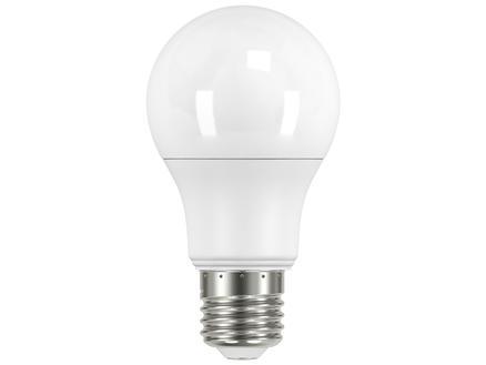 Prolight Ampoule LED poire E27 5,6W