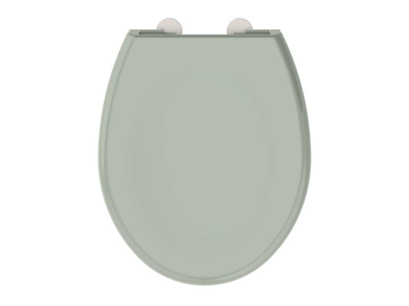 Allibert Boreo abattant WC vert-de-gris
