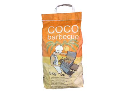 Briquettes coco 5kg