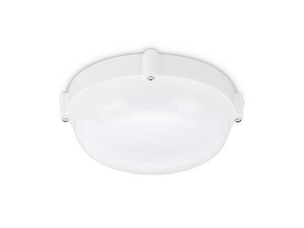 Prolight Cool White applique murale extérieure LED 7W blanc
