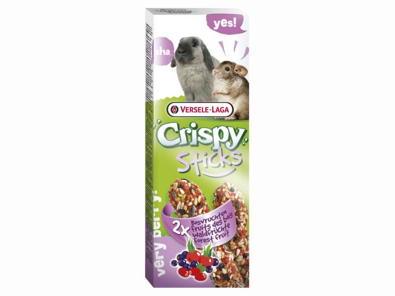 Crispy Sticks knaagsticks konijnen en chinchilla's bosvruchten 2 stuks