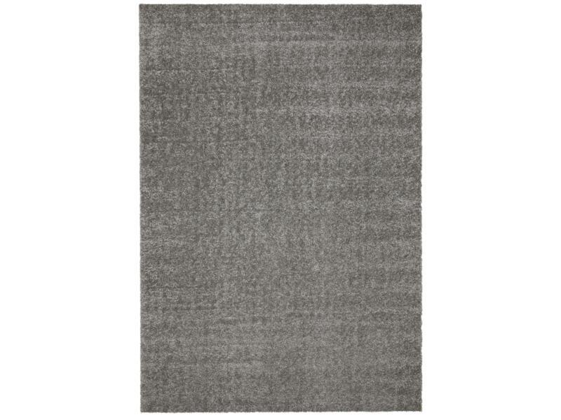 Dolce vloerkleed 80x150 cm grijs