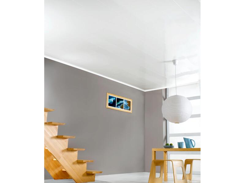 Dumaplast Dumaclip V-groef wandpaneel 120x25 cm 2,4m² bologna roomwit