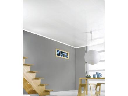 Dumaplast Dumaclip wand- en plafondpaneel 120x25 cm 2,4m² wit