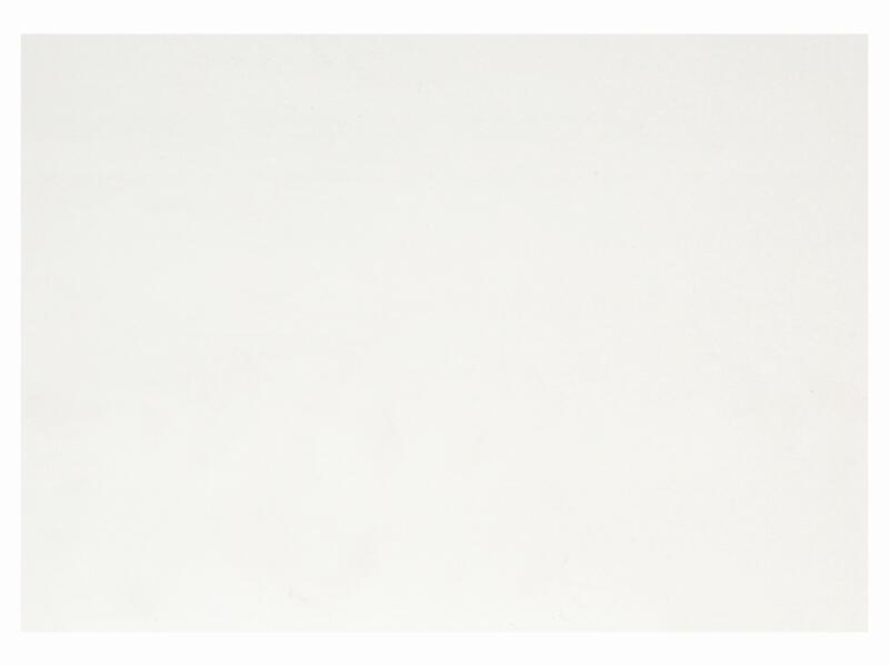 Dumaplast Dumapan Basic wandpanelen 260x25 cm 2,6m² grijswit