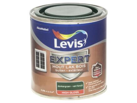 Levis Expert laque extérieur brillant 0,25l vert foncé
