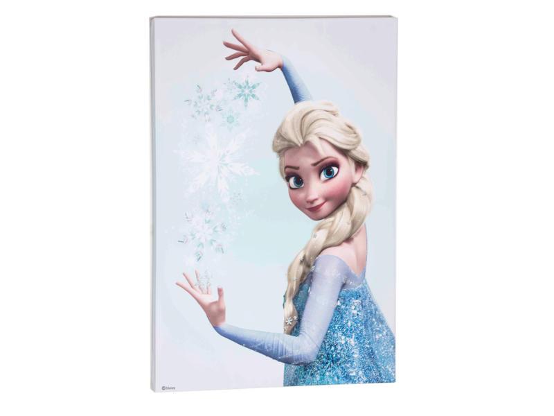 Disney Frozen Elsa toile imprimée 50x70 cm