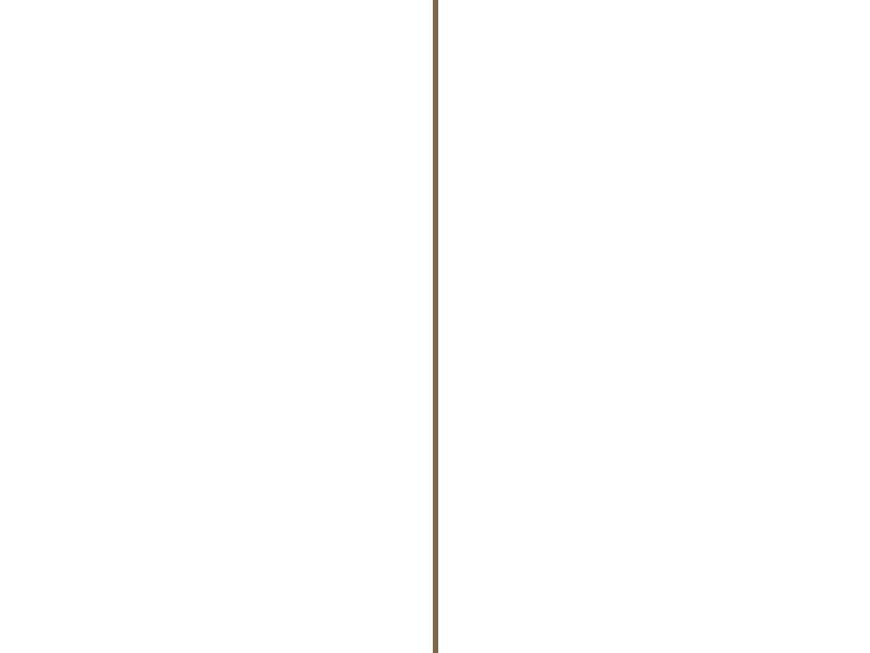 Hoekprofiel 20x20 mm 260cm lichte eik