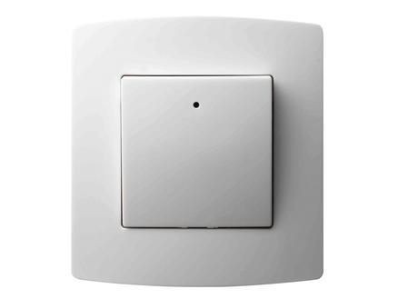 Interrupteur bipolaire 10A blanc encastrable