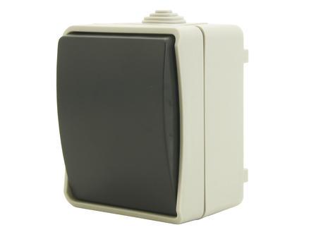 Interrupteur bipolaire étanche 10A gris