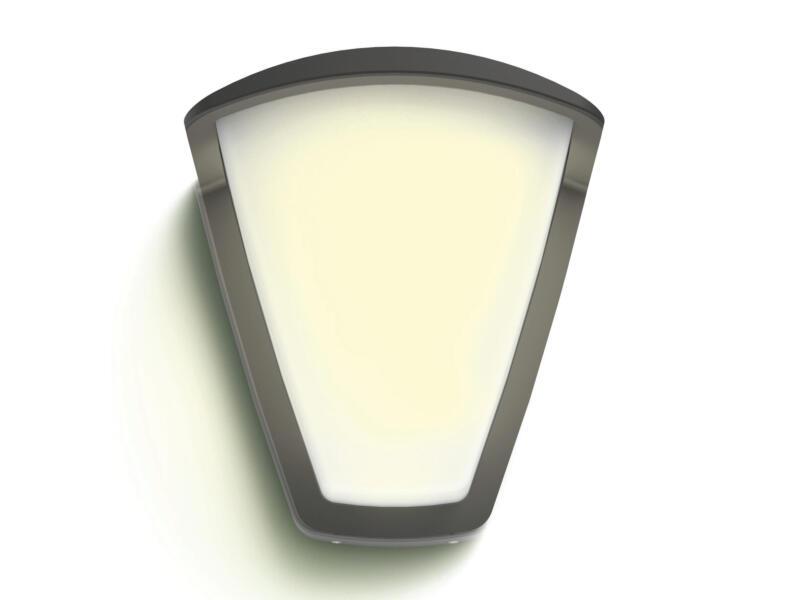 Philips Kiskadee wandlamp E27 max. 42W dimbaar antraciet