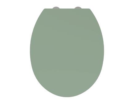 Allibert Kristal abattant WC vert-de-gris