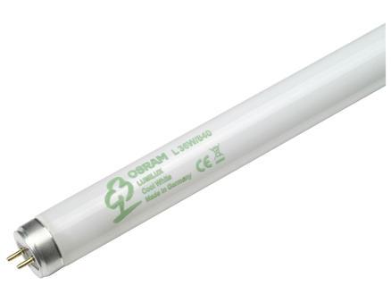 Osram Lumilux TL-lamp T8 36W 1200mm koel wit