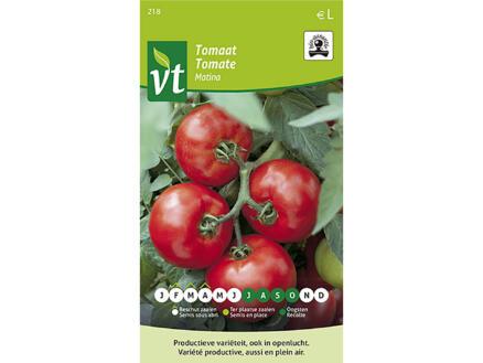 Matina tomaat bio