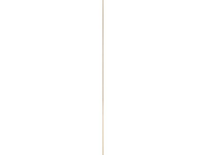 Plafondlijst 16x16 mm 270cm grenen 1818