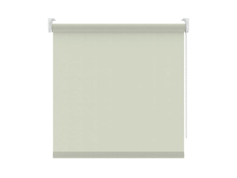 Decosol Rolgordijn lichtdoorlatend 90x250 cm beige