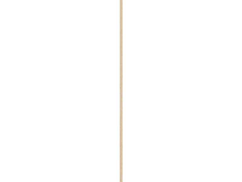 Schaaflat grenen 4x43 mm 270cm