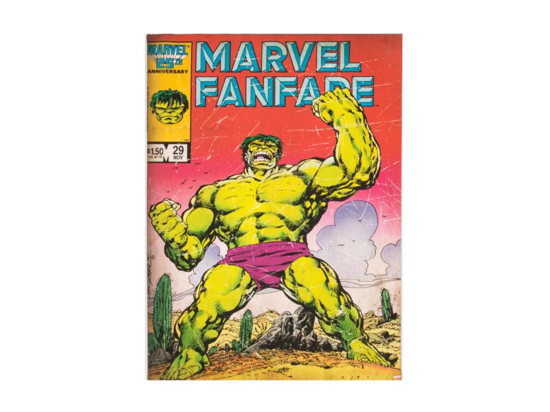 The Hulk canvasdoek 50x70 cm