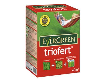 Evergreen Triofert engrais gazon 4kg 40m²