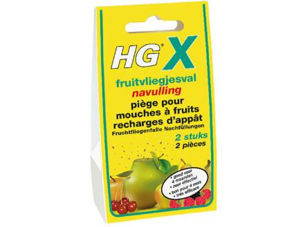HG X navulling fruitvliegjesval 20ml 2 stuks