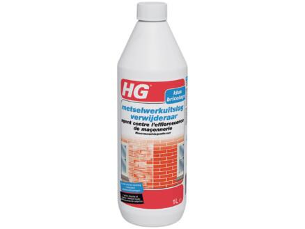 HG agent contre efflorescence de maçonnerie 1l