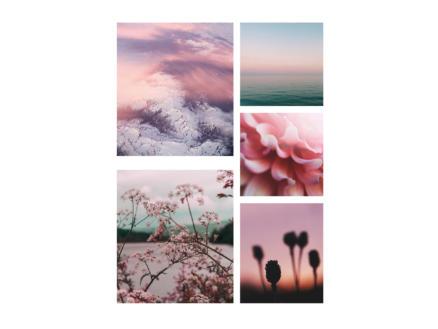 Art for the Home canvasdoek set 60x80 cm roze stilte 5 stuks