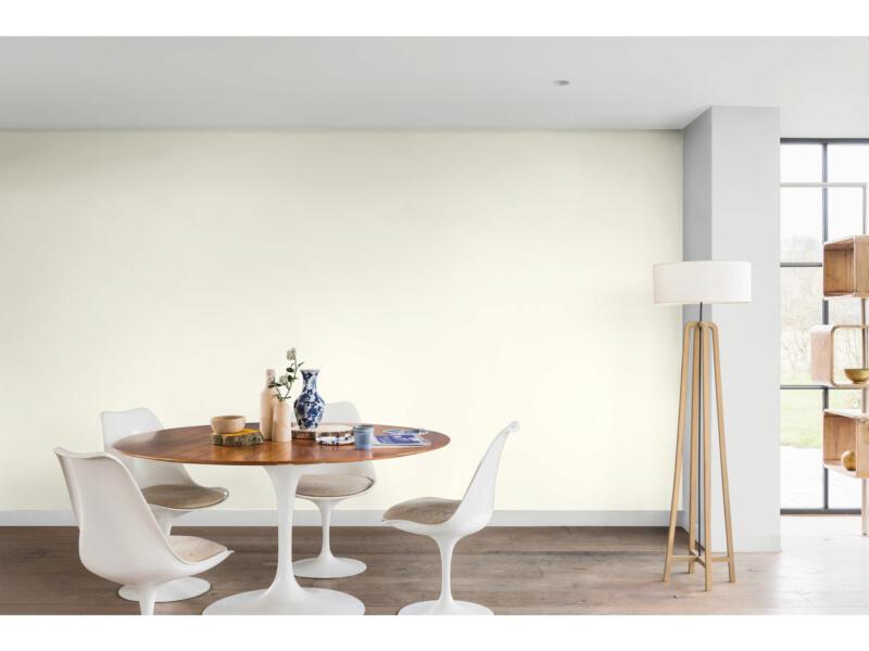 Levis peinture plafond mat 5l blanc lys