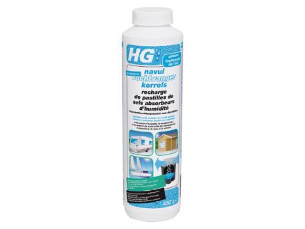 HG recharge absorbeur d'humidité 0,45kg pastilles de sel