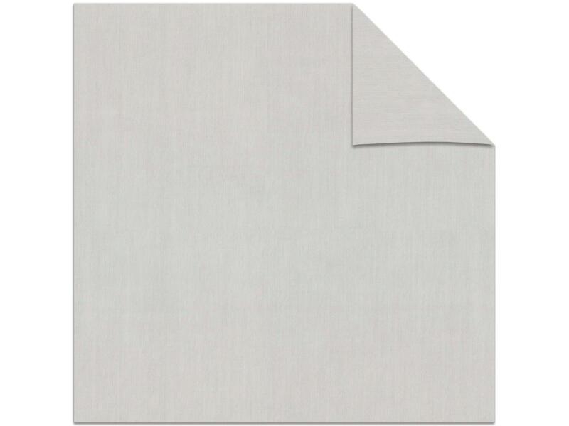 Decosol store enrouleur transparent 180x190 cm gris clair