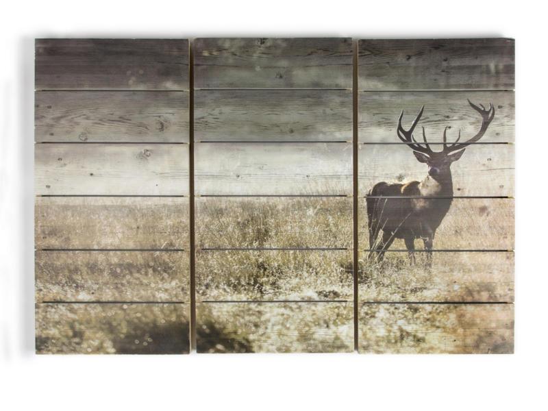 Art for the Home tableau imprimé sur bois 90x60 cm cerf