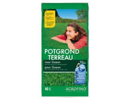 Agrofino terreau pour gazon 40l