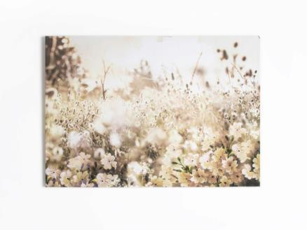 Art for the Home toile imprimée 100x70 cm fleurs de prairie crème