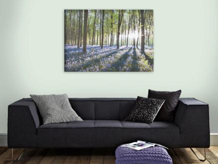 Art for the Home toile imprimée 100x70 cm jacinthe des bois vert/violet