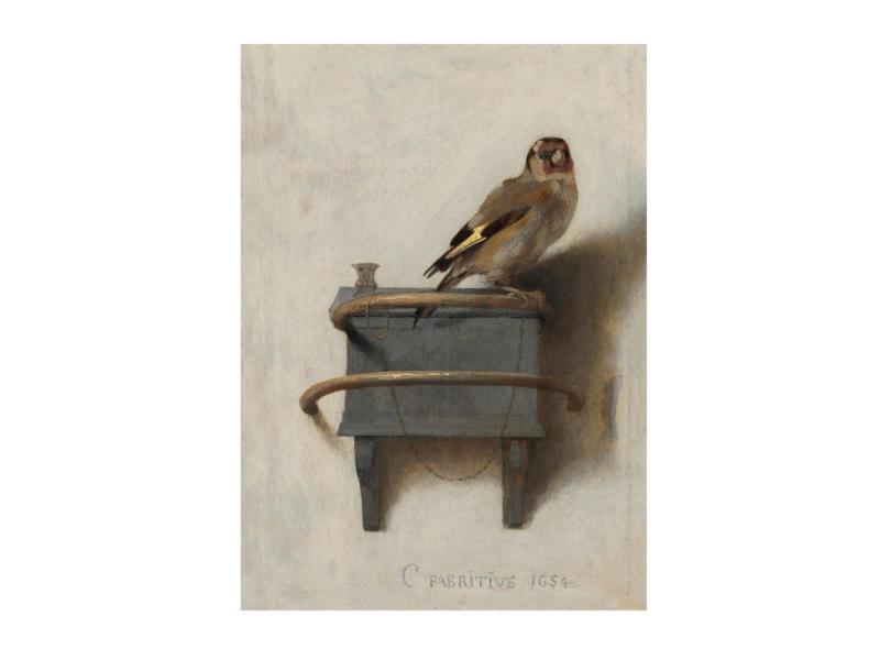 Art for the Home toile imprimée 70x100 cm chardonneret