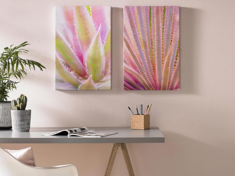 Art for the Home toile imprimée 80x60 cm plantes grasses 2 panneaux