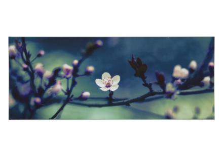 Art for the Home toile panoramique 100x40 cm fleurs bleu